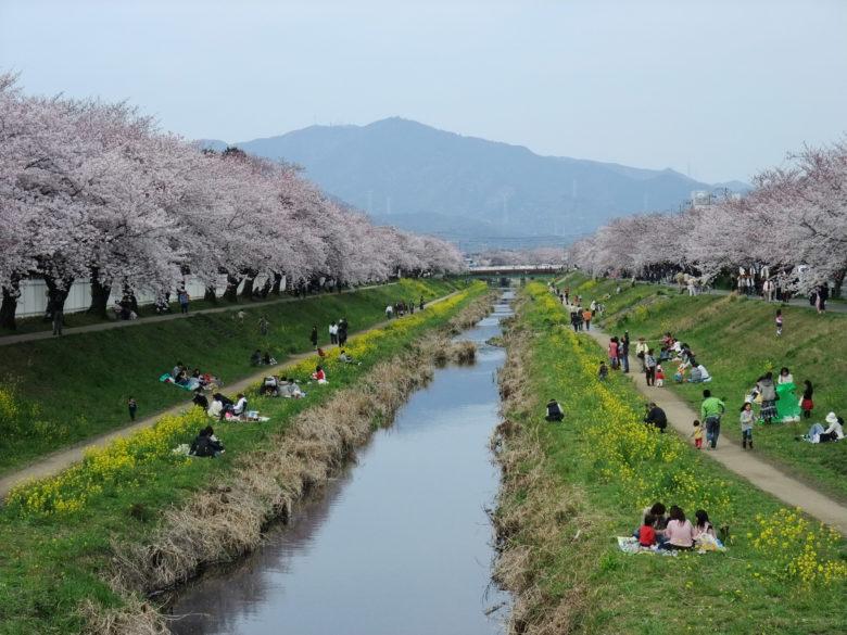豊川市の画像